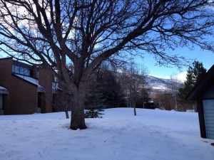 Snow Near the Yarrow Theater and Hotel in Park City Utah